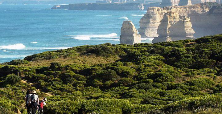 Die Landschaft Australiens ist nicht nur trocken und staubig. Rund um die Twelve Apostles zeigt sich die Natur von ihrer grünen Seite.