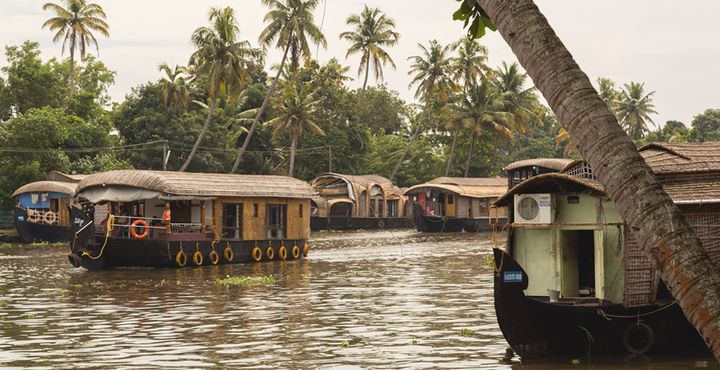 Wenn Sie schon mal in der Kerala Region sind, ist ein Besuch der Backwaters ein absolutes Muss. Bild: Marko Roth Productions