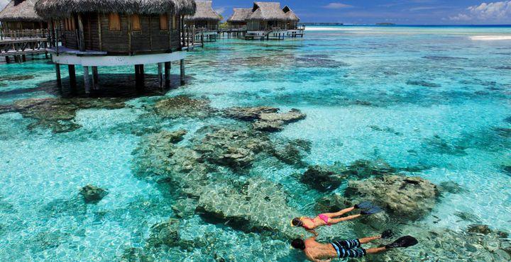 Schwimmen Sie mit bunten Fischen und lernen Sie die spektakuläre Unterwasserwelt bei unvergesslichen Tauch- und Schnorchelausflügen kennen.