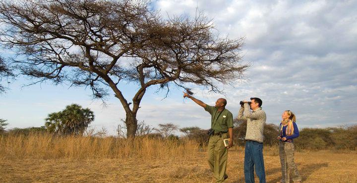 Wir haben eine kurze Safari-Rundreise für Sie zusammengestellt, die Sie und Ihre Kleinen nicht vergessen werden.
