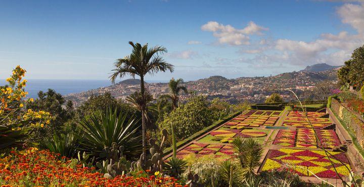 Wenn Sie Zeit haben, sollten Sie auf jeden Fall den farbenprächtigen Botanischen Garten oberhalb von Funchal einen Besuch abstatten.