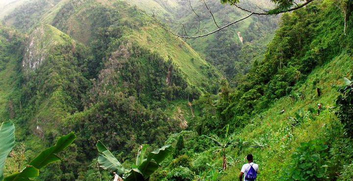 Auf gehts ins Abenteuer! Wandern Sie durch den Nebelwald und die wunderschöne Natur