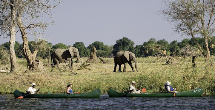 Unsere Kanu-Safari erlaubt Ihnen die Schönheit des Landes auf entspannte Weise zu genießen.
