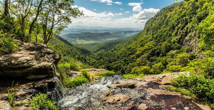 Tauchen Sie ein in die beeindruckende Natur des Lamington Nationalparks.