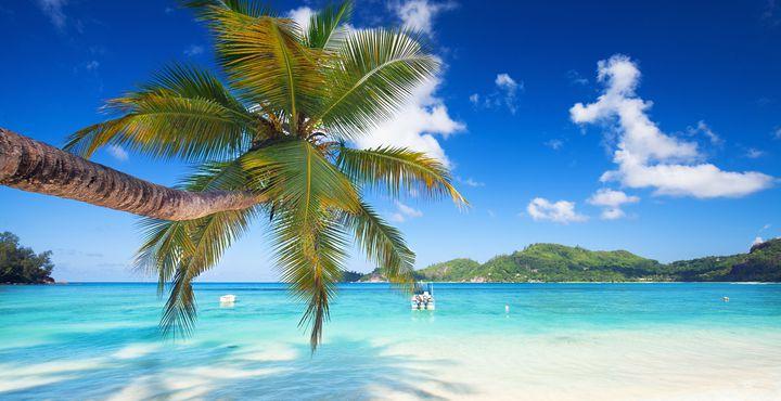 Am Nachmittag des heutigen Tages geht es nach einer unvergesslichen Reise wieder zurück nach Mahé.