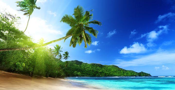 Willkommen zurück auf der Insel Mahe. Sie werden umgehend zu Ihrer gebuchten Unterkunft gebracht.